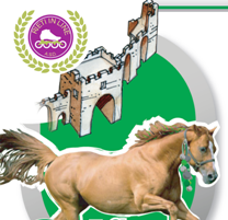 Cavalli Infiocchettati 2017 rieti in line